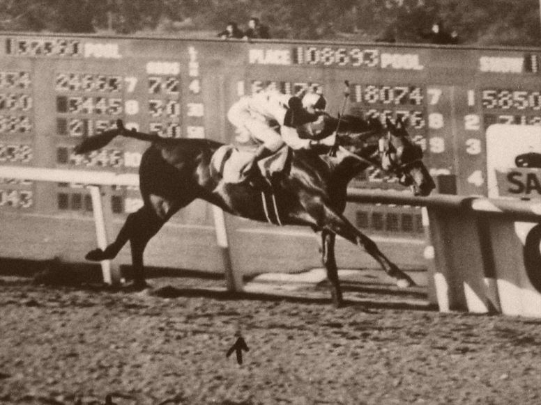 ' Sea-Biscuit Wins 1940 SAH '